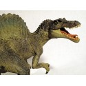 LOTE SPINO