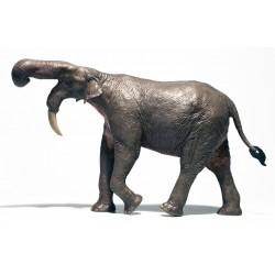 Dinosaures i Animals de la Prehistòria