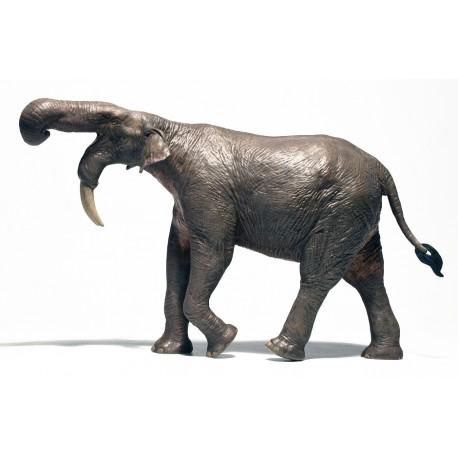 Dinosaurios y Animales de la Prehistoria